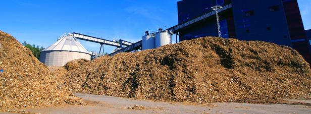 AAP BCIAT : financement de la biomasse